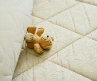 mattress bed bugs